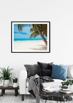 Beatiful Palm Beach