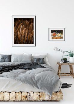 Mature Wheat Fields