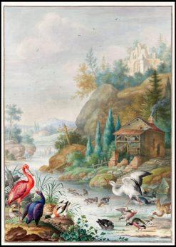 Birds near a Mountain Stream