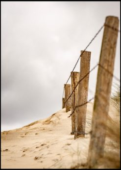 Oldfashioned Fence in Sand Dune