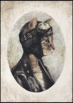 The Biker Cat by Mike Koubou