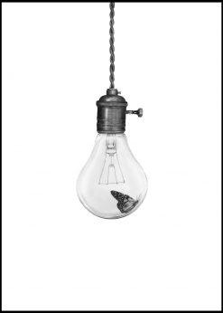 Flying Light by Sanna Wieslander