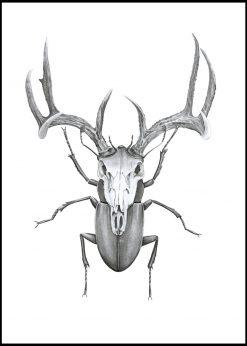 Mr Stag Beetle by Sanna Wieslander