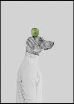 Apple on My Head by Jenni Tervahauta