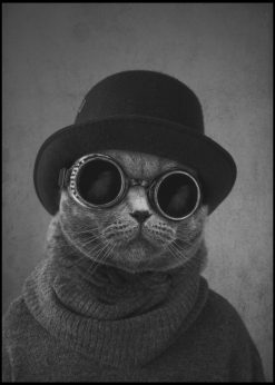 Cat with the Hat by Jenni Tervahauta
