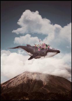 Wale by Jenni Tervahauta
